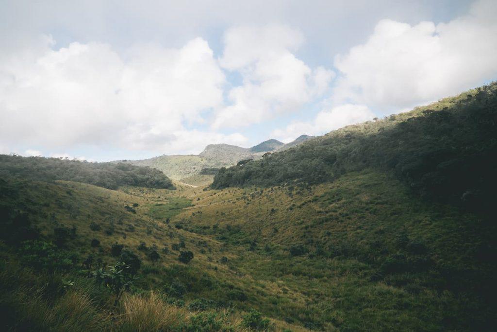 vue plaine horton plain's