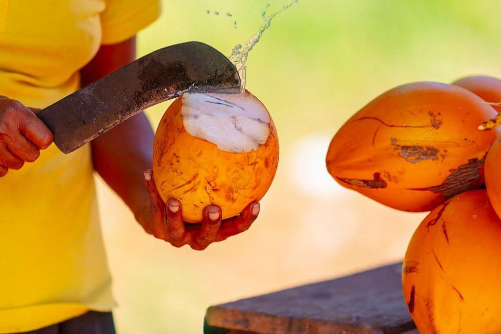 homme qui ouvre une noix de coco