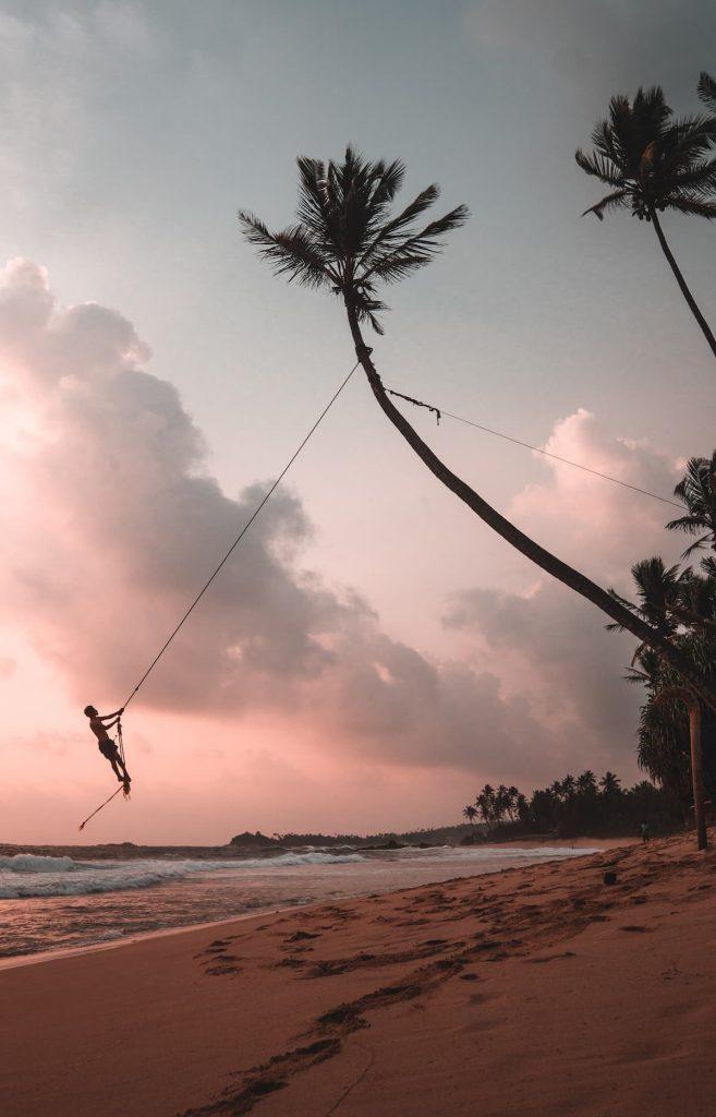 unawatuna homme qui se balance sur une branche